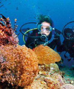 Lặn bình khí tại Phú Quốc – Diving Center