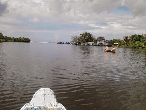 Tour Sông Cửa Cạn Phú Quốc - Chèo Thuyền Kayak
