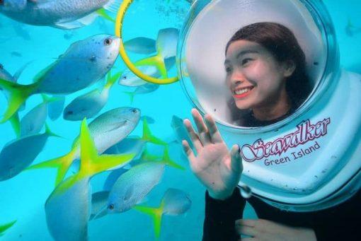 Đi bộ dưới biển Phú Quốc cùng những đàn cá